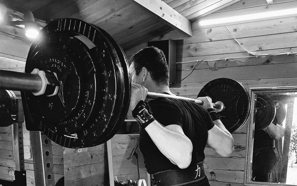Wendler531 Trainingsplan